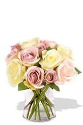 12 Soft Meadow Roses